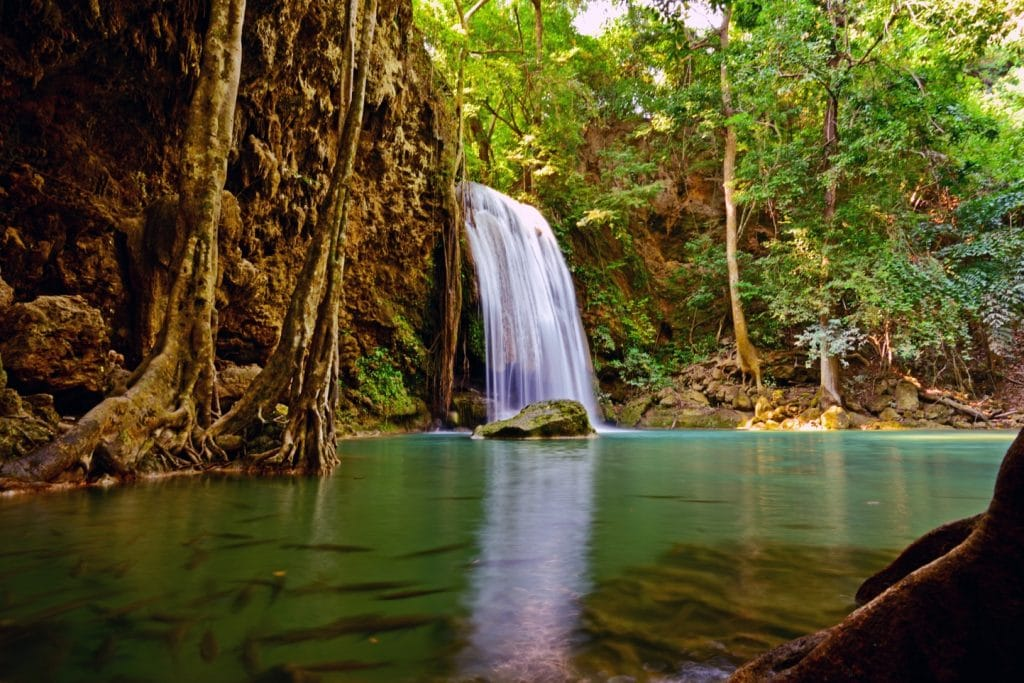 waterfall and nature landscape