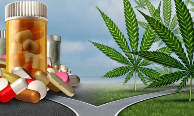 The Truth about Opioids <br> (and The Wild West of Marijuana Treatment)